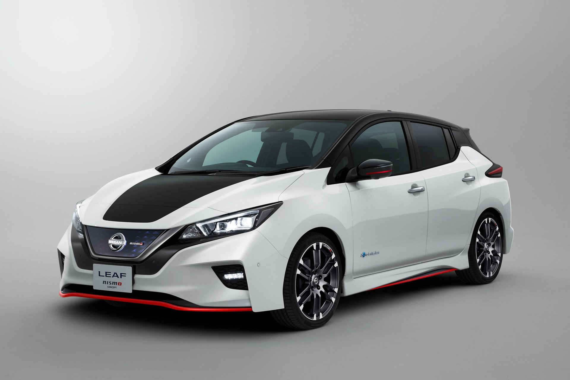 New 2019 Nissan LEAF S for sale $29,990 at M and V Leasing in Brooklyn NY 11223 1