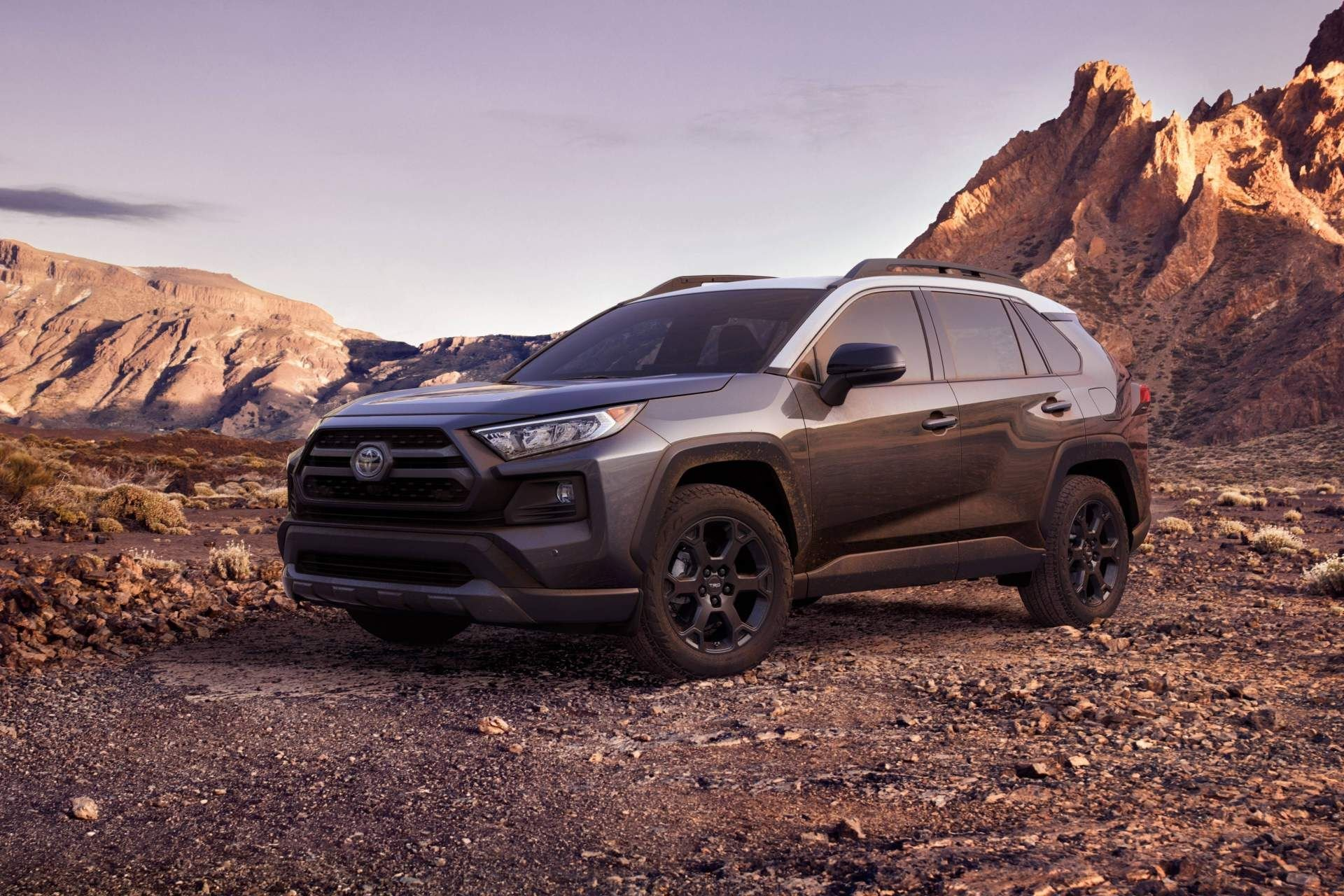 New 2019 Toyota RAV4 Hybrid LE Hybrid for sale $27,850 at M and V Leasing in Brooklyn NY 11223 1